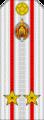 Belarus MIA—05 Lieutenant Colonel rank insignia (White).png