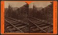 Below, Lightning Curve, towards, Point Lookout, on the B. G. R. R, by R. A. Bonine.png
