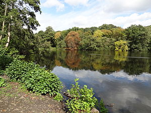 Bentley Priory Nature Reserve - Summerhouse Lake