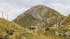 Bergtocht van Alp Farur (1940 meter) via Stelli (2383 meter) naar Gürgaletsch (2560 meter) 012.jpg