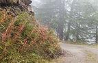 Bergtocht van Vens naar Bettex in Valle d'Aosta (Italië) 015.jpg