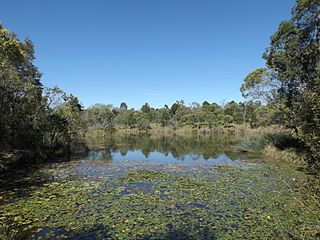Billabong Australian term for a seasonal oxbow lake