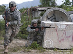 Best Warrior Competition tests US Army National Guard, Reserve Soldiers 150308-F-AD344-161.jpg
