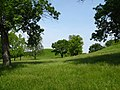 Between the Twin Mounds - panoramio.jpg
