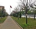 Beylikdüzü özgürlük meydanı yeşil alan - kış manzarası - panoramio.jpg