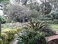 Bhandarkhal Garden467.jpg