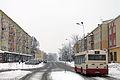 Biała Podlaska, Aleja Tysiąclecia (zima).jpg
