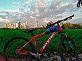 Bike and Eastwood Skyline.jpg