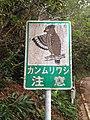 Bird sign Ishigaki.jpg