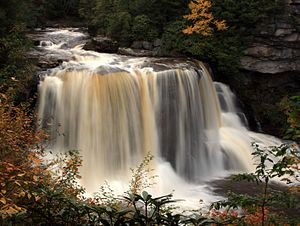 Environment of West Virginia - A view of Blackwater Falls State Park