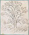 Blakelock, Ralph Albert - Chestnut Tree, Catskills.jpg