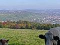 Blick von Ostfildern nach Esslingen - panoramio.jpg