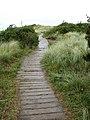 Boardwalk onto the dunes - geograph.org.uk - 909092.jpg