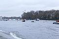 Boat Race 2014 - Main Race (98).jpg