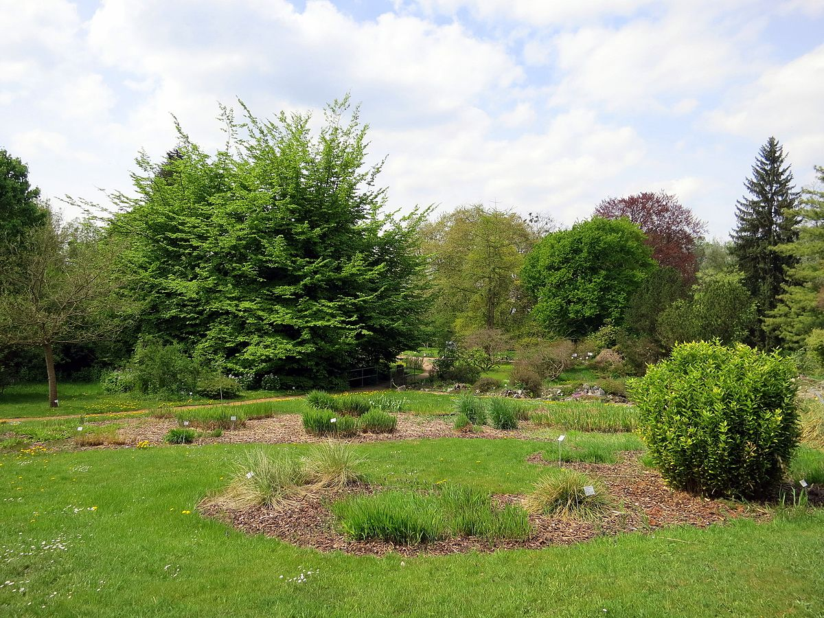 Botanical Garden Of TU Darmstadt