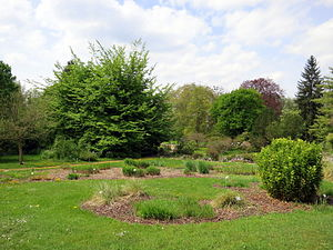 Botanical Garden of TU Darmstadt - Look at the Botanical Garden