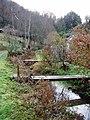 Bottom of the gardens, Chalford Bottom - geograph.org.uk - 281618.jpg