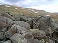 Boulders - geograph.org.uk - 1707430.jpg
