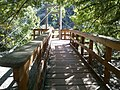 Boyce Thompson Arboretum, Superior, Arizona - panoramio (22).jpg