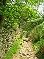 Bridleway adjacent to woodland - geograph.org.uk - 1373323.jpg