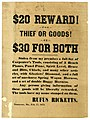 Broadside- $20 Reward! for Thief or Goods! or $30 for both, February 17, 1875.jpg