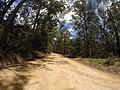 Brooman NSW 2538, Australia - panoramio (145).jpg