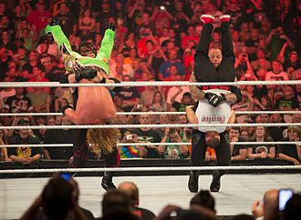 The Brothers of Destruction - The Brothers of Destruction hit simultaneous Tombstone Piledrivers to Curt Hawkins and Hunico