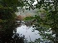 Buckden Pond - geograph.org.uk - 990470.jpg