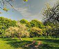 Budyszcze Park 71-212-5019 DSC 5101.jpg