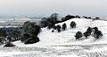 Burton Dassett Snow Scene.jpg