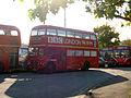 Bus img 7421 (16155325498).jpg