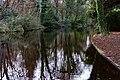 Bushy Park, Dublin -123681 (31168660626).jpg