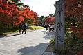 Byodoin Uji Kyoto03s3s4110.jpg