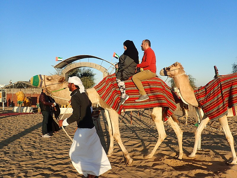 File:Camel Ride during the Desert Safari Tour.jpg