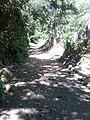 Camino en salamanca city - panoramio.jpg