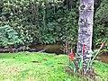 Camping - panoramio (12).jpg