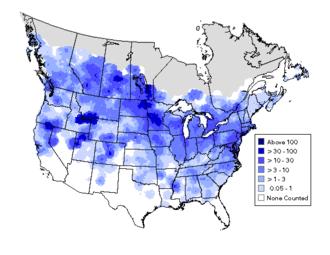 Bird atlas - Summer distribution and abundance of Canada goose using data from the North American Breeding Bird Surveys 1994-2003