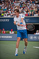 Canada 2010 Andy Murray Backhand.jpg