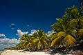 Catalina Island, La Romana, Dominican Republic. Coast line view.jpg