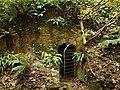 Cave near Stallen - geograph.org.uk - 1555919.jpg