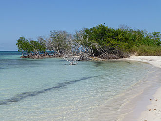Watts' West Indies and Virginia expedition - Cayo Jutias as seen today