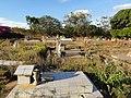 Cementerio Guaribe - panoramio (6).jpg