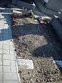 Cementerio Sur de Madrid (26).jpg