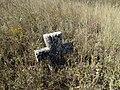 Cemetery in Kosharka 29.jpg