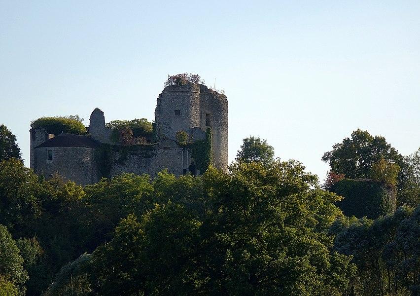Château de Montaigu-le-Blin