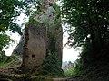 Château du Girsberg (528 m) (Ribeauvillé) (1).jpg