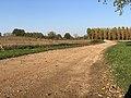 Chemin Fasses - Saint-Cyr-sur-Menthon (FR01) - 2020-10-31 - 1.jpg