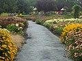 Chemin fleuri au Centre de la Nature. - Flowery Path, Laval, Québec - panoramio.jpg