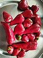 Chillies. 14.jpg