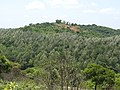 Chinna shervaroyan hill-1-mines-yercaud-salem-India.jpg